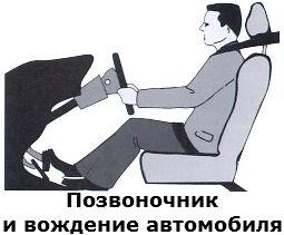 Позвоночник и вождение автомобиля