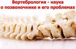 Вертебрология Киев
